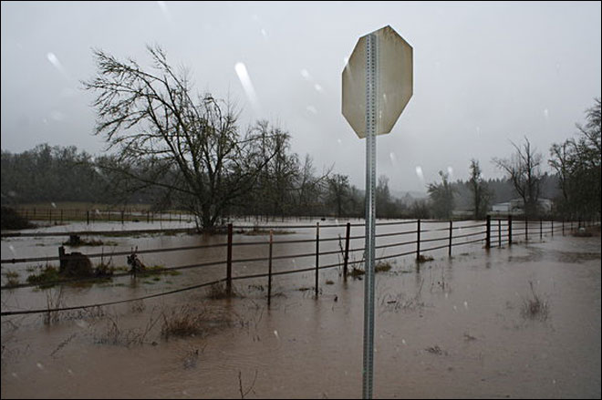 Local farmers pasture destroyed by Rickreall Creek flooding. Picture by Zachary Odegard.