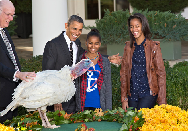 Obama pardons Thanksgiving turkey