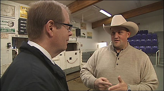 Video: Reporter gets a lesson in cattle auctioneering