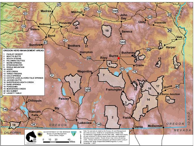 BLM horse management areas