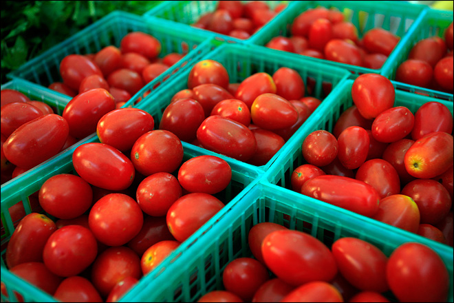 Mexican tomatoes, strawberries worry Fla. growers