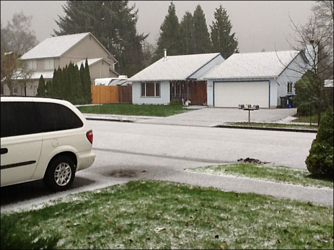 Snow in Thurston