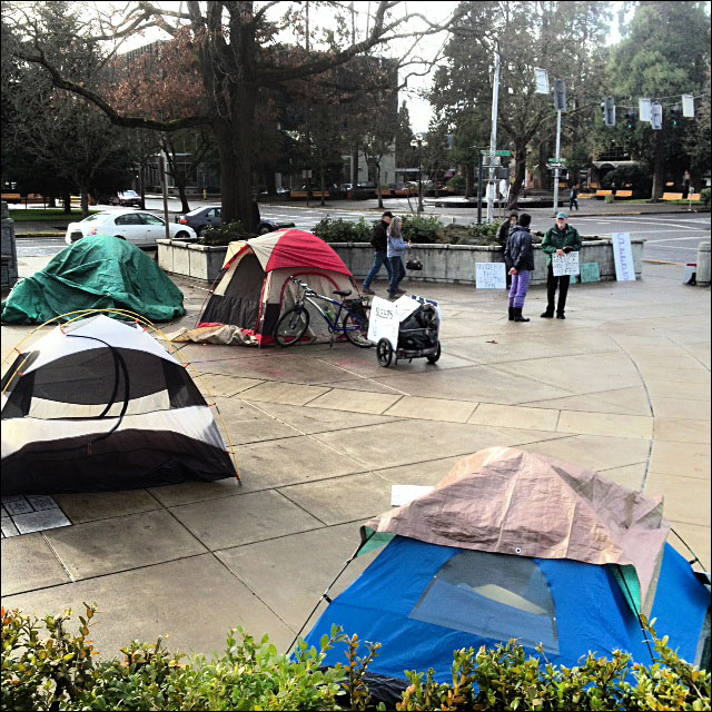 20 campers cited for trespassing outside courthouse