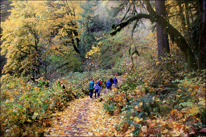 Oregon considers limits on smoking at state parks