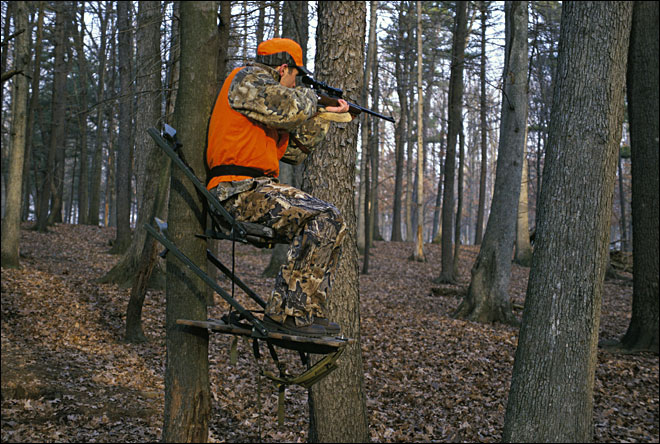 Hunters: Report your tags or face a $25 fine