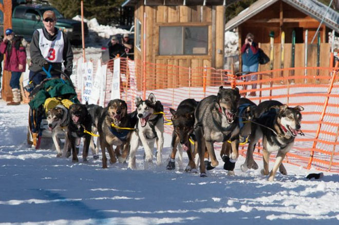 Eagle Cap Extreme Sled Dog Race