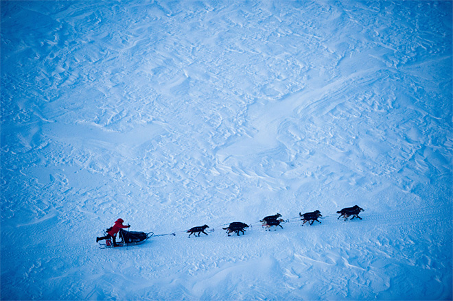 Iditarod-Photo Gallery