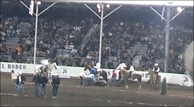 St. Paul Rodeo cancels wild horse race after last year's tragedy