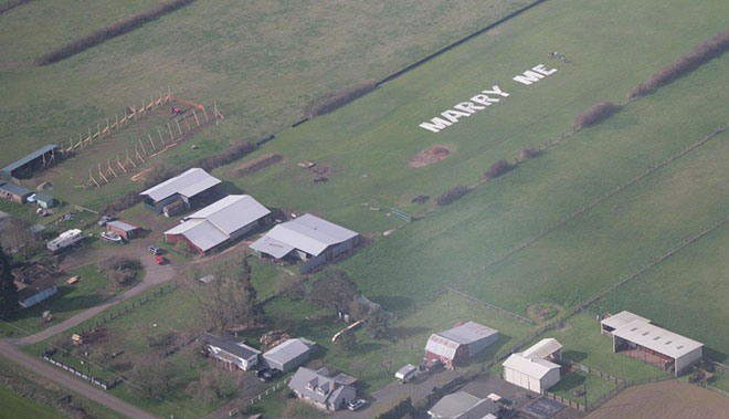 Marriage proposal 'plane' but not simple