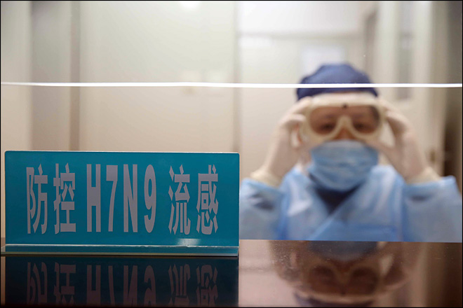7 killed by new bird flu strain in China
