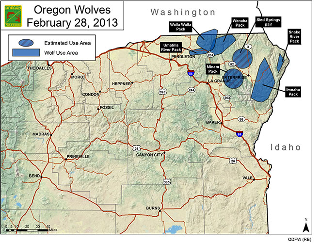 130426oregon-wolf-packs