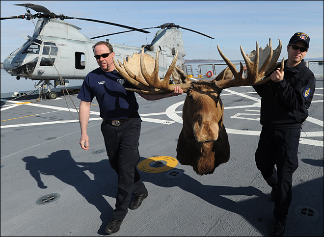 Alaska moose head donated to Navy's newest warship