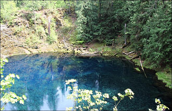 UO student drowns after jumping into Tamolitch Pool