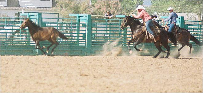 Eastern Oregon horse roping event faces increased scrutiny