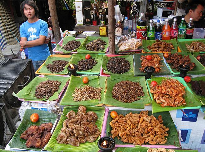 Italy UN Insects For Food