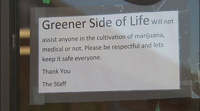 Grass not always greener: Pot bust publicity hurts innocent shop