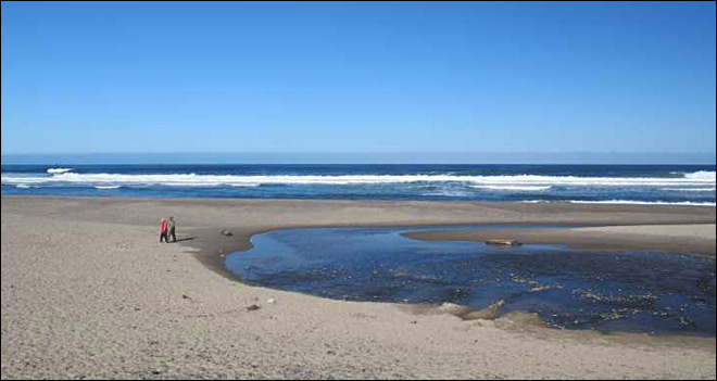 Wash. woman drowns in rip tide near Lincoln City