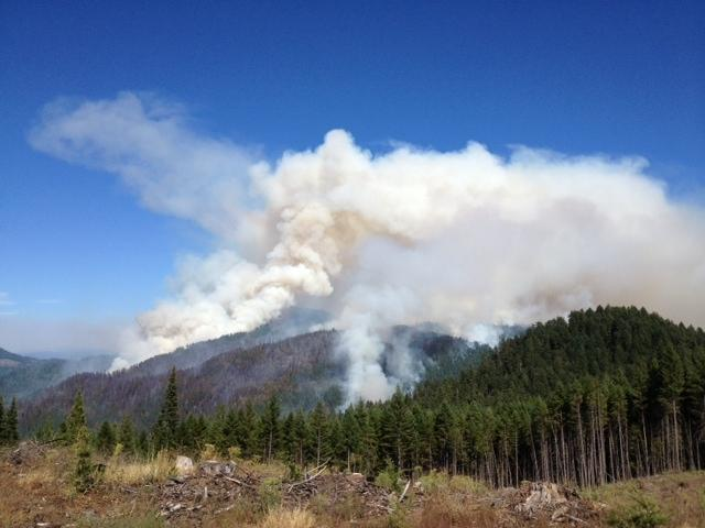 Whiskey fire jumps line, wind shifts on Douglas Complex