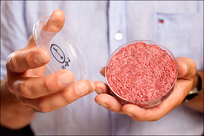 $330,000 nets first lab-created hamburger, but taste needs work