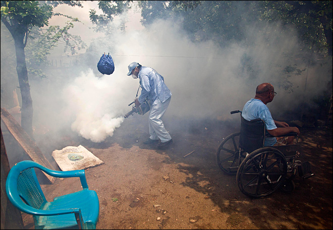 Dengue epidemic looms for Central American region
