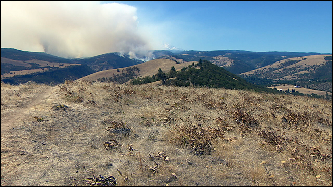 The Dalles fires
