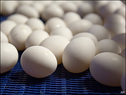 Thief steals truck with $22,000 worth of eggs