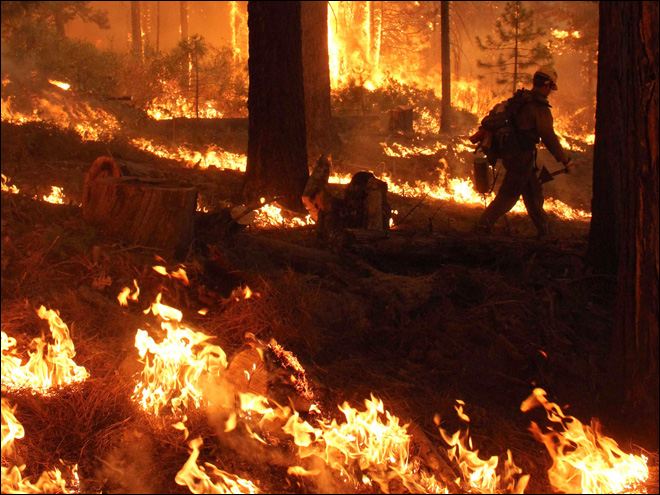 Forest Service: Hunter caused huge wildfire near Yosemite