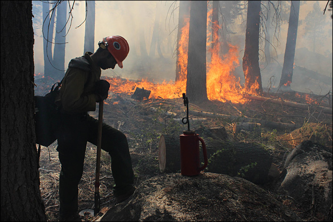 Wildfire near Yosemite burns into fourth week