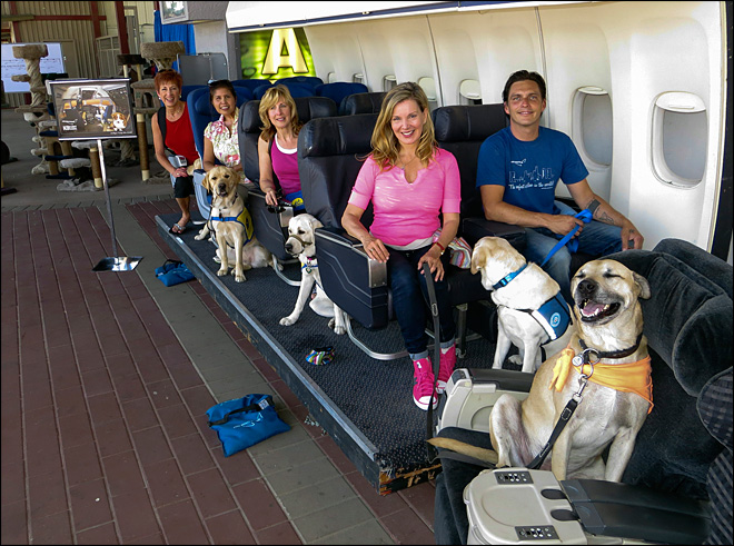 A Hollywood studio where dogs learn to fly
