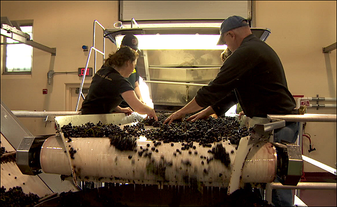 Out of state winemaker wants a piece of the action in Oregon