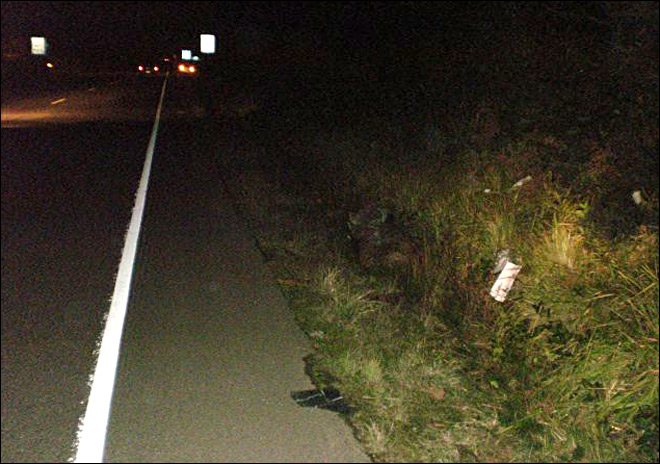 Police: Hitchhiker hit by passing car on Hwy 101