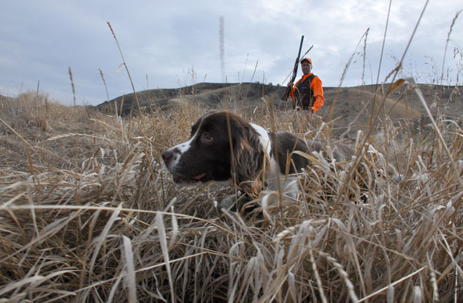 'I don't ever want to be a hunter without a dog'