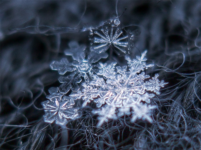 Snowflakes, Up Close and Personal