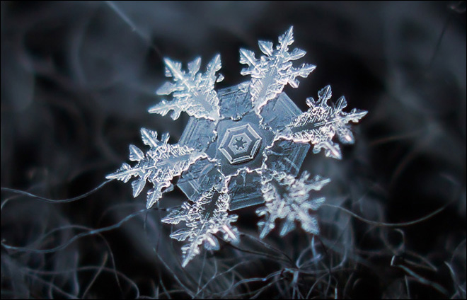 Photographer gets incredible close-up shots of snowflakes