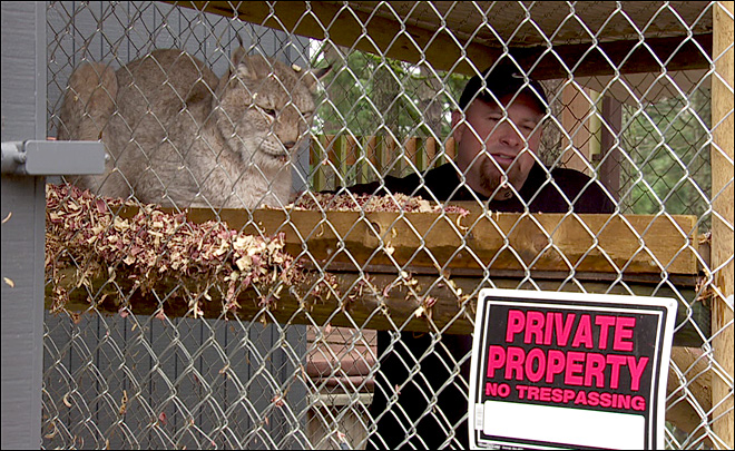 Bill passage paves the way for veteran to keep lynx at home
