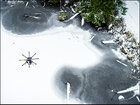 Captivating video of PNW snowstorm captured with drone