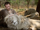 'Lion Whisperer' interrupted by lion while speaking about lion conservation