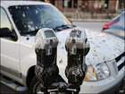 Midwest city's parking meters besieged with crow droppings