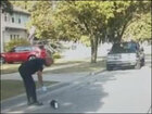 Detroit officer saves skunk stuck in yogurt container