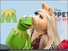 Say it isn't so! Kermit and Miss Piggy split