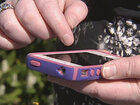 Police: Woman dials wrong number, offers detective drugs