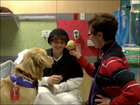 Dogs cheer up teen chemo patient