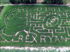 Buffalo Bill's Rex Ryan corn maze