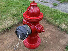 Man fights for his right to ... paint a fire hydrant a different color