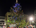 City's 'ugly' Christmas tree prompts public outcry