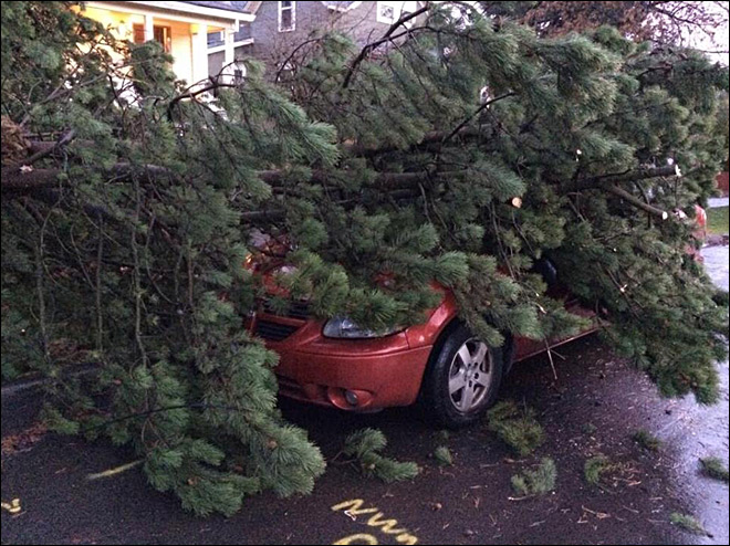 High winds will continue to whip across Oregon on Saturday