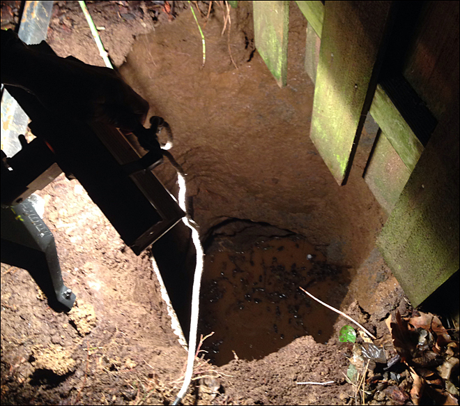 Portland woman, dog rescued from 20-foot-deep sinkhole
