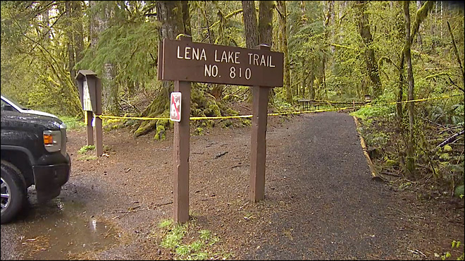 Boy Scout dies during outing in Olympic National Forest