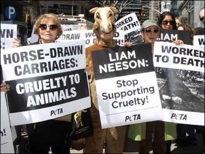 Carriage horse foes, PETA, picket Liam Neeson's NYC home