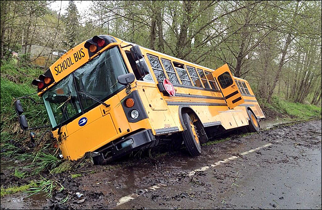 Bee causes school bus crash; no one injured